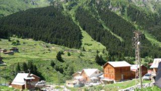 قرية كوي