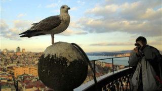 السياح اليونانيين يفضلون تركيا بسبب انخفاض سعر صرف الليرة التركية